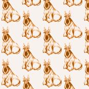 Jenny-Scottish Terrier-Burnt umber