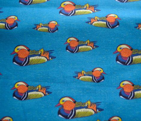 mandarin duck pattern