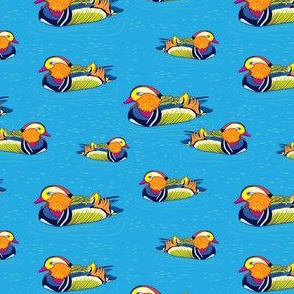 mandarin duck pattern