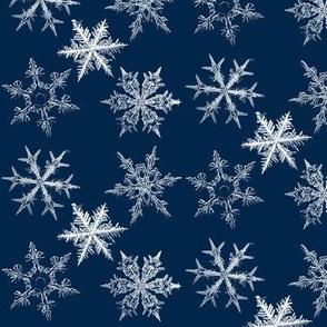 snowflakes, midnight blue