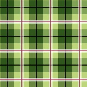 Lady Slipper Coordinate Green