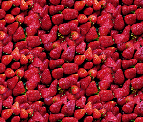 Fresh Strawberries! fabric by peacoquettedesigns on Spoonflower - custom fabric