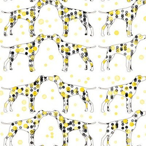 yellow dotty dogs