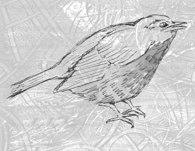 Single_bird_black_and_white_preview