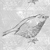 single_bird_black_and_white