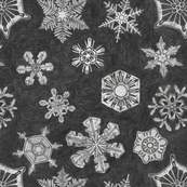 Pencil Drawn Snowflakes
