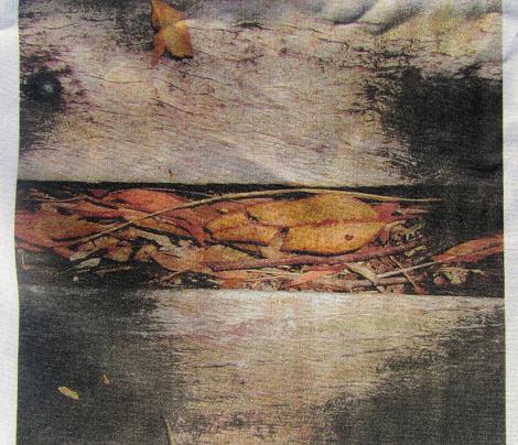 Wooden_Walk.