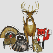 Woodland Animal Group