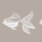 goldfish_white on gray