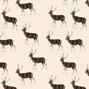 Deer Park Herd Ecru