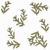 Pine Needle Print
