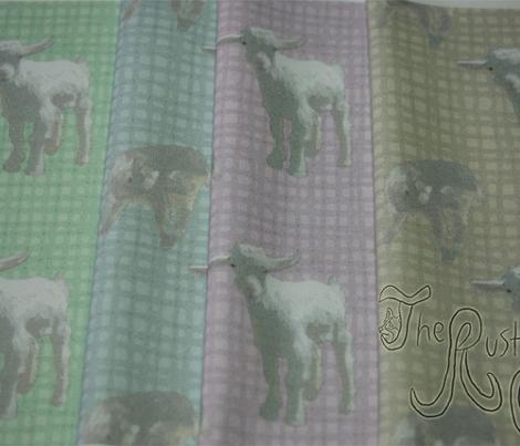 Pigmy goat babies - purple