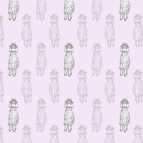 Angora Goat doodle - lavender
