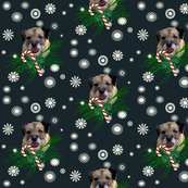 Rrborder_terrier_christmas__shop_thumb