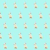 Snowshoe Hare, Aqua