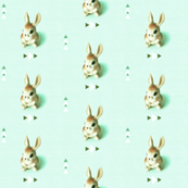 Retro Rabbit, Mint Green Arrows