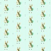 Retro Rabbit, Mint Green Arrows