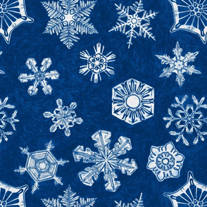 SNOWFLAKES_1-ch