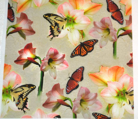 Amaryllis and Butterflies 2