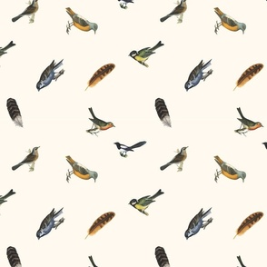 Birds Menagerie