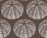 Sea_urchins_brown-01_thumb