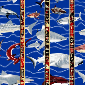 Shark Aquarium 3.