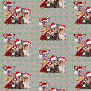 Santa_Paws_Christmas