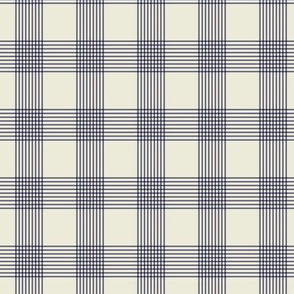 Regency Cotton Checker