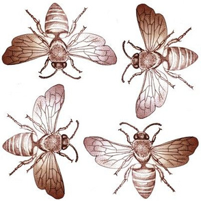 Bees of Jupiter in Sepia