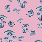 Forest Floor in Wonderland Pink & Blue