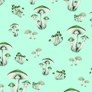Forest Floor in Mint