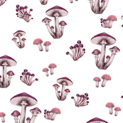 Forest Floor in Pink