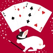 Rrrabbit_in_a_hat_magician_does_card_tricks_2_shop_thumb