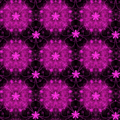 Fuschia floral pattern