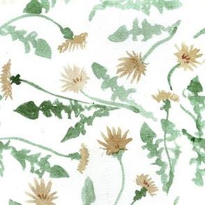 dandelion watercolor
