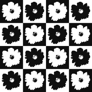 Checkered Peonies