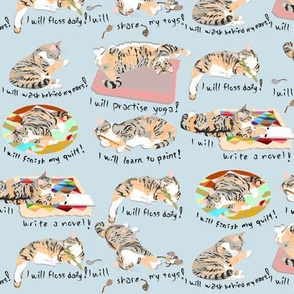 Natasha's Resolutions 2014