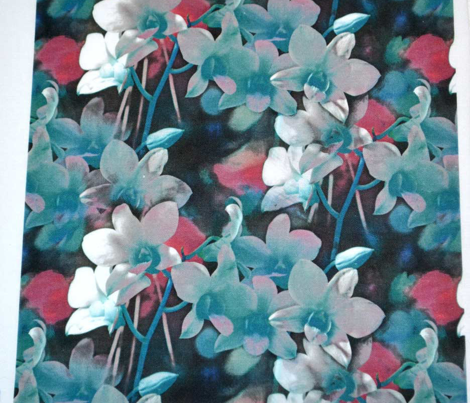 Baby blue and pink orchids