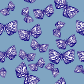 Moth in Indigo on Blue