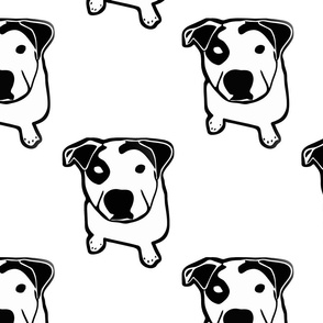 Pit Bull T-Bone Graphic