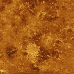 Map of Venus (radar image of the surface)