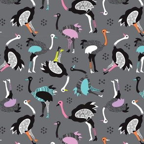 Fun retro birds design ostrich zoo design
