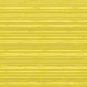 Stripes On Lime