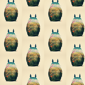 Totoro Outline