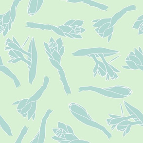blue daffodils