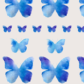 A row of butterflies - neutral