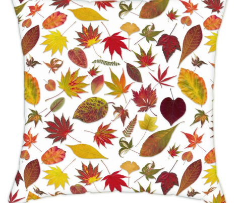 Fall Leaves Collection