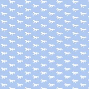WhitePonyBluebell