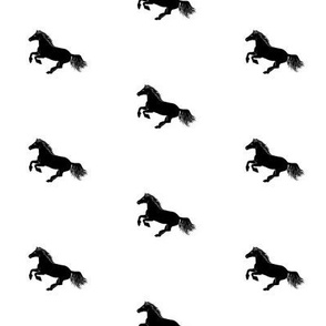 Black Pony on White, Diagonal Wide