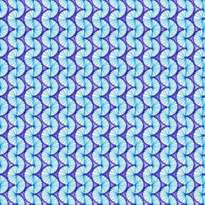 Radial Tridacna Quilt